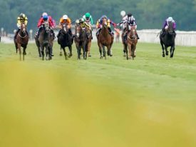 Make Money On Horse Racing With Horse Laying System